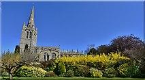 SK8608 : Oakham: All Saints' Church by Michael Garlick