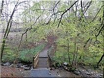 NN9357 : Footbridge leading to lochside path at Loch Faskally by Douglas Nelson