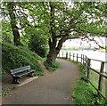 ST3190 : Riverside bench between Malpas and Caerleon by Jaggery
