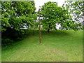 ST3090 : Rusty metal pole on a green between Rowan Way and Pilton Vale, Malpas, Newport by Jaggery