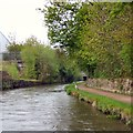 SJ9495 : Heron on the Peak Forest Canal by Gerald England