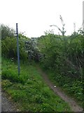 SO6302 : Public footpath by Gill