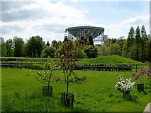SJ7971 : Lovell Radio Telescope by Philip Platt