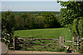TQ4350 : View From Crockham Hill by Peter Trimming