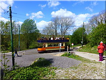 SK3455 : Open topped tram at Crich at the terminus by Raymond Knapman