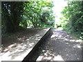 SO8898 : Railway Path Halt by Gordon Griffiths
