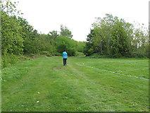 TQ2282 : Walker by woodland in Wormwood Scrubs by David Hawgood