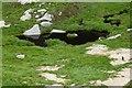 NR9742 : The Saddle by Raibeart MacAoidh