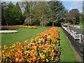 SP3265 : Spring floral bedding display in Jephson Gardens, Royal Leamington Spa by Robin Stott