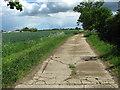 TM4388 : Bridleway to Ellough industrial estate by Evelyn Simak
