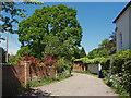 SU8971 : Grove Lane, Winkfield Row by Alan Hunt