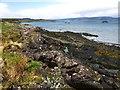 NM6839 : Sea shore at Scallastle Bay, Mull by wrobison