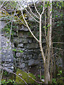 SD4873 : Disused lime kiln, Warton Crag by Karl and Ali