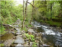 SX6094 : Stepping stones beside the East Okement River by David Smith