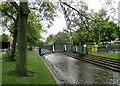 SK5444 : Bulwell Bogs Park by John Sutton