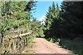NR9574 : Road in Acharossan Forest by Alan Reid