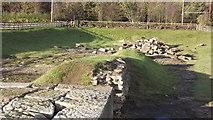 NZ2115 : Remains of the Roman bridge at Piercebridge by John Welford