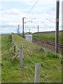 NT9855 : East Coast Main Line north of Berwick by Oliver Dixon