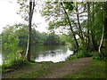 TQ1478 : Lake in Osterley Park by Paul Gillett