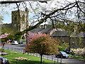 NU0501 : All Saints, Rothbury by Carroll Pierce