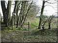 TG4901 : Footpath by Keith Evans
