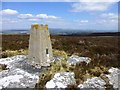 NY9695 : Trig point on Darden Pike by Russel Wills