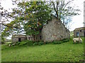 NY9619 : Ruin near Hury Farm by Mick Garratt