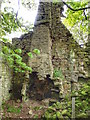 NY9619 : The Range in a Ruin near Hury Farm by Mick Garratt