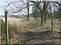 TM4674 : Footpath Junction by Keith Evans