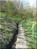 SE0722 : Elland FP2, with a little stream alongside, Greetland by Humphrey Bolton