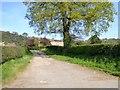 SJ4853 : Track to Oak Farm, Broxton by David Smith