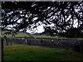SD3687 : St Peter, Finsthwaite: churchyard (4) by Basher Eyre