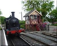 TQ8833 : Scene at Tenterden Town station by Marathon