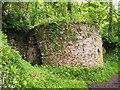 SN0005 : Lime Kiln, Cosheston by welshbabe