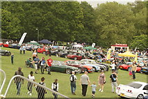 TQ3370 : View of classic cars at the National Sports Centre from the Crystal Palace terrace steps #5 by Robert Lamb