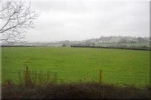 SX5857 : Farmland near Lower Venton Farm by N Chadwick