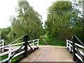 ST9461 : Rusty Lane heading south from its swingbridge [No 151] by Christine Johnstone