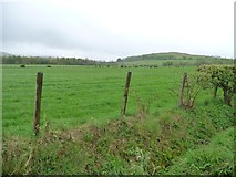 NY2436 : Farmland west of Scawthwaite Mire by Christine Johnstone