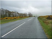 NY3141 : The road to Caldbeck by Christine Johnstone