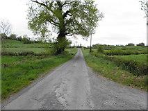 H7447 : Finglush Road by Kenneth  Allen