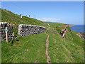 NT9757 : Berwickshire Coast Path by Oliver Dixon