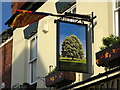 SP3178 : Pub Sign at The Chestnut Tree by Keith Williams