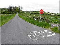 H7447 : Finglush Road, Derrygooly / Tannaghlane by Kenneth  Allen