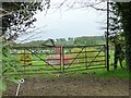 SU2462 : Field gates above Wolfhall Farm by Christine Johnstone