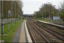 TQ5038 : Ashurst Station by N Chadwick