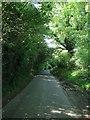 TQ3230 : Paddockhurst Lane by Simon Carey