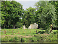 TQ0072 : Remains of Ankerwycke Nunnery by Stephen Craven