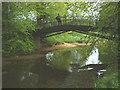 NY6024 : Iron bridge over the Lyvennet near Crossrigg Hall by Karl and Ali