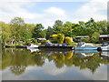 TL1697 : River Nene near Orton Lock by Paul Bryan