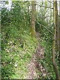 SE0722 : Sowerby Bridge FP148 (7) by Humphrey Bolton